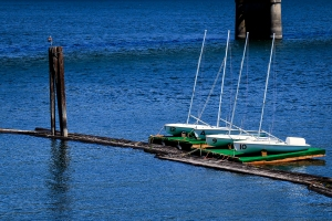 training-boats1web